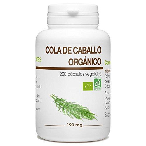 Cola de caballo Orgánico - Equisetum arvense - 190mg - 200 cápsulas vegetales