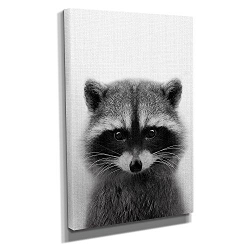Nerdinger Raccoon Portrait - Kunstdruck auf Leinwand (20x30 cm) zum Verschönern Ihrer Wohnung. Verschiedene Formate auf Echtholzrahmen. Höchste Qualität.