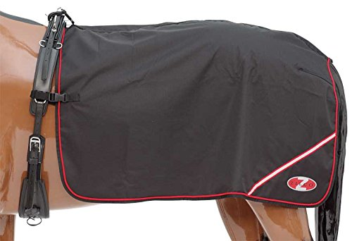 Zilco Deluxe Nierendecke -Decke für Kutschenfahrten oder Longier-Übungen, Large