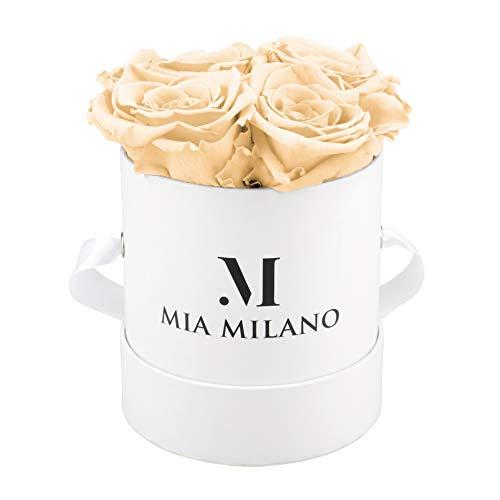 Mia Milano ® Rosenbox mit Infinity Rosen (Versand in neuer stabiler Kartonage) Flowerbox mit konservierten Blumen | 3 Jahre haltbar (Medium - Champagner) -