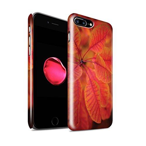 STUFF4 Glanz Snap-On Hülle / Case für Apple iPhone 8 Plus / Pinke Rose Muster / Englische Gärten Kollektion Rote Blätter
