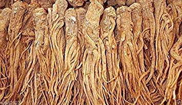 Virtue Female Ginseng Seeds - Dong Quai, Chinese Medicine Herb, Angelica Sinensis