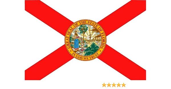 Michael Rene Pflüger Barmstedt 8 4 X 5 4 Cm Autoaufkleber Fahne Von Florida Usa Aufkleber Sticker Fürs Auto Motorrad Handy Laptop Auto