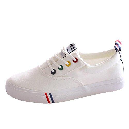 Zapatos De Deporte De Color Sólido De Lona De Encaje Plano Sólido De Color Sólido Para Mujeres Zapatos De Deporte. Blanco