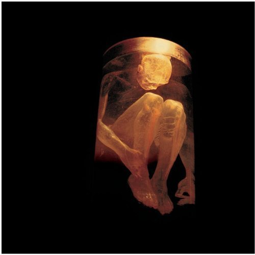 Nothing Safe - The Best of the Box by Alice In Chains (2015-05-03)
