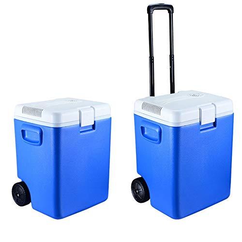 Frigorifero per auto portatile Frigorifero mini Mini frigo elettrico per frigo da...