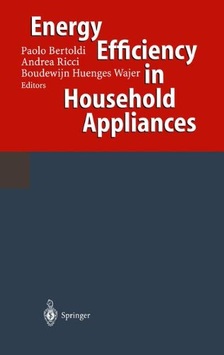 Energy Efficiency in Household Appliances: Proceedings of the First International Conference on Energy Efficiency in (12 Appliance)