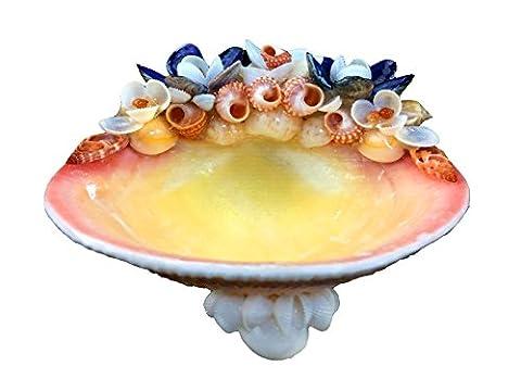 Eco Decorative Seashells Soap Dish - Multi Purpose Dish - Pacific Tiger Lucina with Strawberry Top Shell