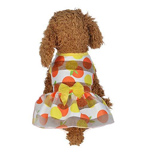 anzösisch Frühling und Sommer Bunte Prinzessin Dress Dog Costumes Pet Clothes ()