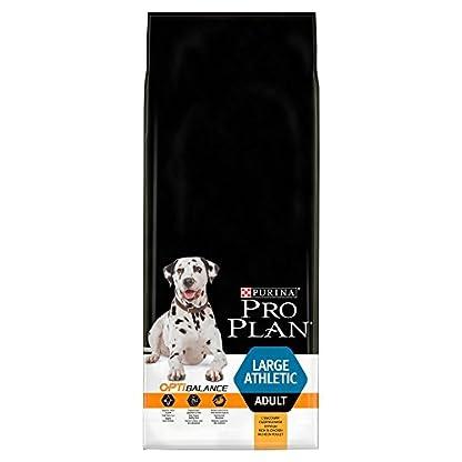 PRO PLAN Large Athletic Adult Dry Dog Food Chicken 14kg 6