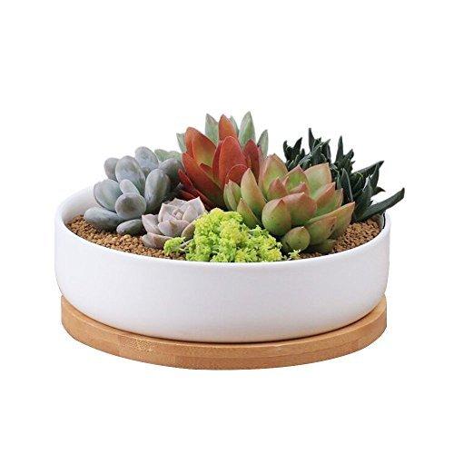 Keramik Blumentöpfe, Y & M (TM) Mini Deko Weiß Rechteckig sucuulent Blumentopf/Cactus Pflanztopf mit Bambus Tablett -