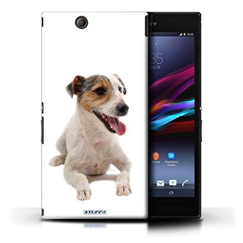 Kobalt® Imprimé Etui / Coque pour Sony Xperia Z Ultra / Bull Terrier conception / Série Chiens Jack Russell Terrier