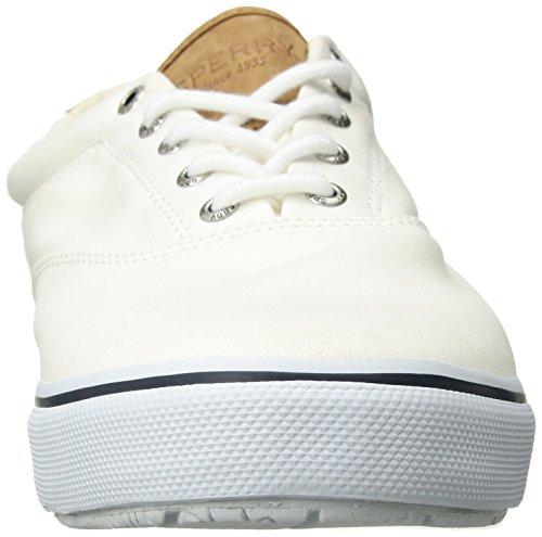 STRIPER Sneakers Sperry WHITE Herren LACELESS Weiß 7dnPFq
