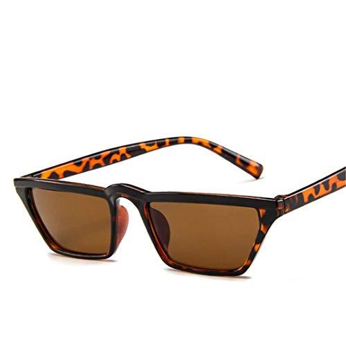 DAIYSNAFDN Vintage Small Frame Sonnenbrillen Frauen/Männer Reisen Sonnenbrille Fahren Leopard