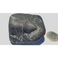 Schungit Stein, 156,05g. aus Karelien, kaum pulvernd, kraftvoll und sehr dekorativ, mit Zertifikat! preisvergleich bei billige-tabletten.eu