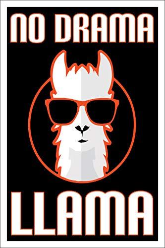 Spitzy's Poster No Drama Llama, 30,5 x 45,7 cm, inkl. weißem Rand