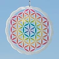 MIC Carillón de Viento–de la Flor de la Vida de Acero Inoxidable Color 200–Dimensión: ø10cm Incluye suspensión