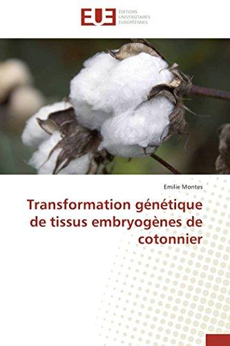 Transformation génétique de tissus embryogènes de cotonnier par Emilie Montes