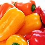 Suttons Seeds 156664 - Mix di semi per peperone dolce F1 Blockie