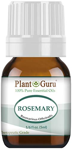 Rosemary Essential Oil. 5 ml. 100% Pure, Undiluted, Therapeutic Grade. Sample Size by Plant Guru par
