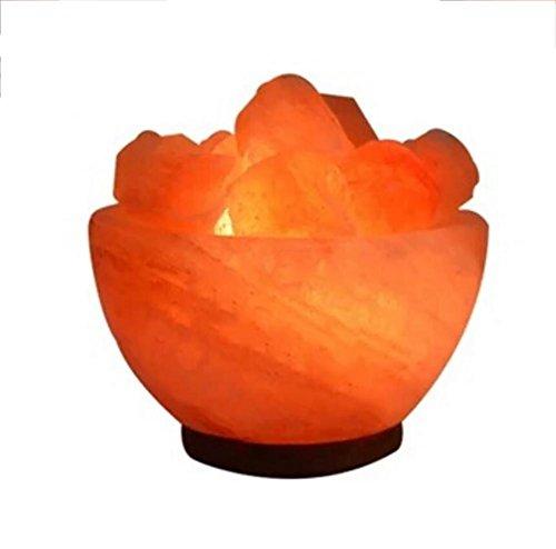Int Einzigen (Kristall Salz Colourpoint Ornamenten CR ¨ ¦ atifs Schlummerlicht Europ ¨ ¦ Ennes, 1)