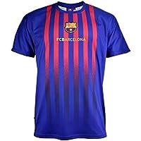 Camiseta Fan 2019 del FC. Barcelona - Producto Oficial Licenciado - Adulto  Talla M - fb25a0c5c31a5