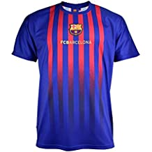 Camiseta Fan 2019 del FC. Barcelona - Producto Oficial Licenciado - Adulto Talla  M - e2136b9d55f