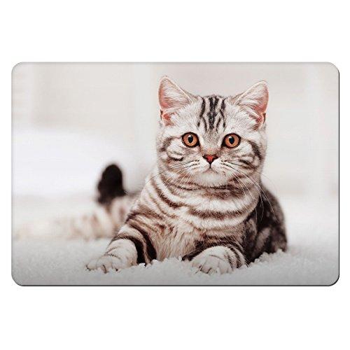 Grau Kitten animal Pet Bowl Feeding Matte 142 (Kitten Grau)