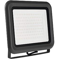 Projecteur à LED LUMIRA de 100 W, Idéal pour utilisation en intérieur et en extérieur, IP65., Aluminium, blanc neutre 100.00W 230.00V