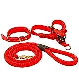 Haustier Leine Pet Rope - Metall stabile 360-Grad-schwenkbare einstellbare Haustier Leine (5 Größen verfügbar) (größe : XL)