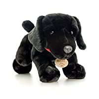 Toyland 35cm Keel Toys Plush Dog - Childrens Soft Toys - Exclusive to