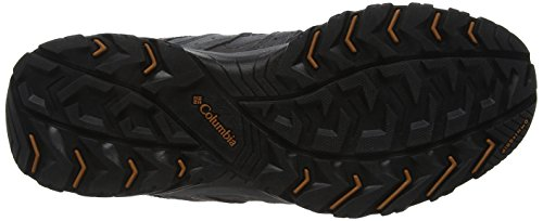 Columbia Canyon Point Leather Omni-Tech Chaussures de Randonnée Basses Homme Gris (Dark Grey, Bright Copper)