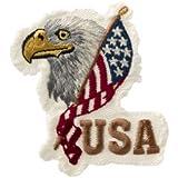 Bandera de Estados Unidos Águila cabeza–Parche para planchar bordados Patch