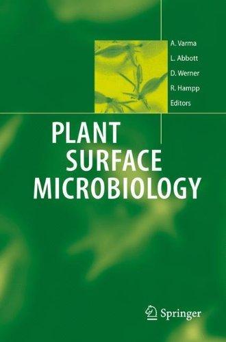 Plant Surface Microbiology (2007-12-06) par unknown