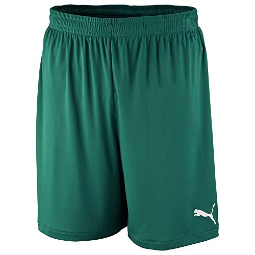 Puma Herren Shorts Velize 701945 Power Green S (Power-mikrofaser-shorts)