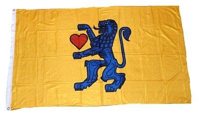 Fahne / Flagge Landkreis Celle NEU 90 x 150 cm Flaggen