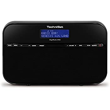 technisat digitradio 250 tragbares digitalradio f r dab. Black Bedroom Furniture Sets. Home Design Ideas