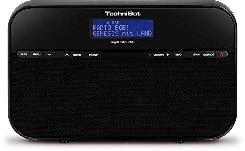 TechniSat DIGITRADIO 250 (tragbares Digitalradio für DAB+ & UKW Empfang, 2W RMS)