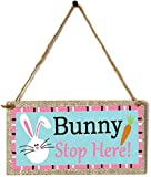 dfhdrtj strict Happy Easter Wooden Hanging Plaques Rabbit Bunny Signs Wooden Pendant Home Decoration(None JM01150/)