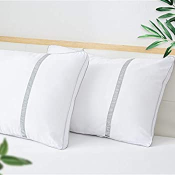 Homefoucs Goose Feather And Down Pillows Pair Of 2 100