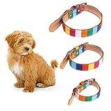 Hundehalsband aus Leder, mit Verstellbarer Schnalle, 1 Stück