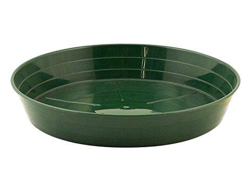 Heidrun 3966714 3 plast soucoupe MOPLEN Euro, 14 cm, vert