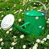 Crazy Daisy Watering Can