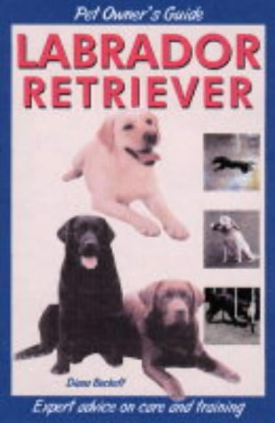 Pet Owner's Guide to the Labrador Retriever