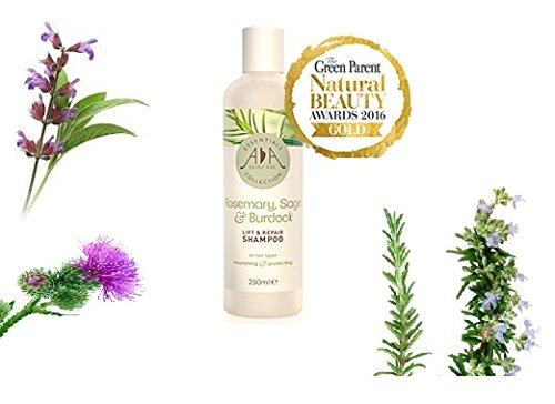 Naturale rosmarino, salvia e Bardana Lift & Repair shampoo 250ml. Antioxidant rich. Senza parabeni