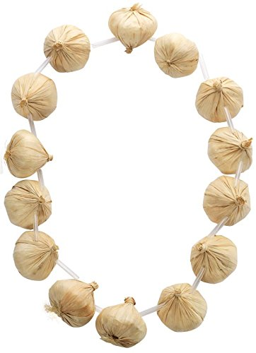 smiffys-garlic-garland-on-necklace-14-pieces