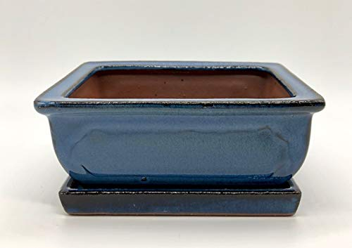 Bonsai Schale mit Untersetzer Blau aus Keramik Glasiert Rechteckig L: 16 cm x B: 13 cm x H: 6,5 cm - Bonsaischale - Bonsai Pot - Indoor/Outdoor