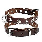 NOADream Leder Hundehalsband Weiche, Bequeme, verstellbare Halsbänder mit Nieten für kleine, mittelgroße Hunde Katzen Pitbull XXS XS SM