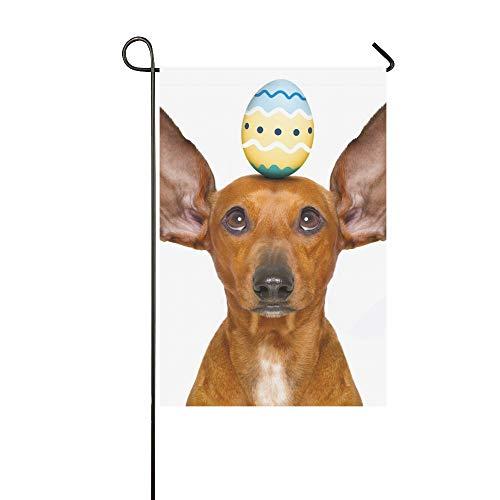 Kostüm Hase Dackel - QuqUshop Wohnkultur Outdoor Doppelseitige Lustige Dackel Wurst Hund Osterhase Garten Flagge Haus Hof Flagge Garten Hof Dekorationen saisonale Willkommen Outdoor Flagge 12x18 In