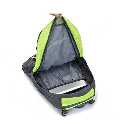 Z&N Backpack 40L KapazitäT Unisex Outdoor Bergsteigen Rucksack Camping Wandern Radfahren Skifahren Urlaub GepäCk Taschen College-Taschen Daypacks Tornister D